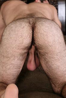 Bunda peluda de homem